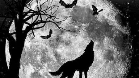 Mơ thấy mặt trăng có điềm báo gì?