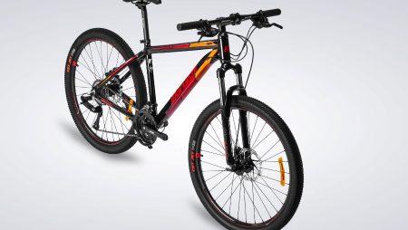 Giải mã giấc mơ thấy xe đạp chuẩn xác nhất?