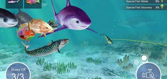 Tổng hợp 5 game câu cá online hay nhất